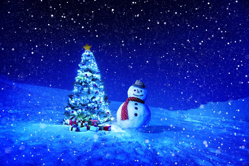 Rendered Christmas tree and snowman in winter scene