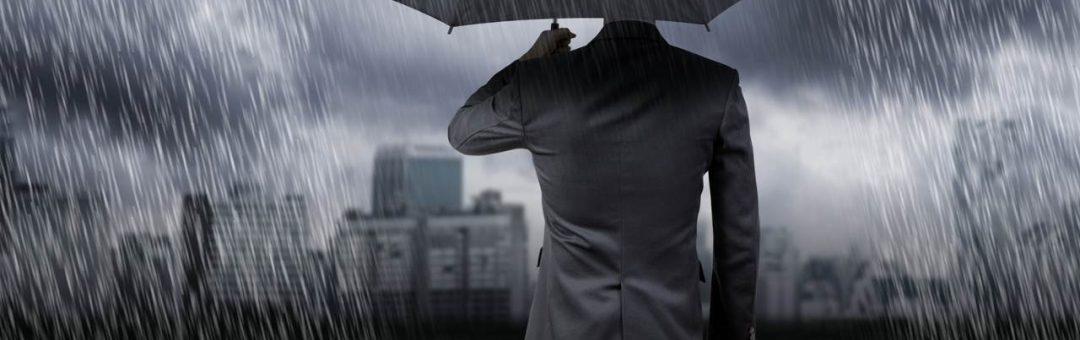Business umbrella cover
